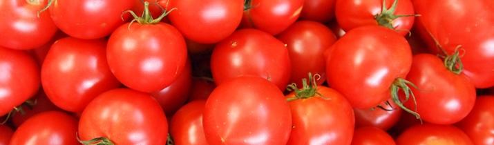 長岡市の美容室ララチッタのトマトスパ